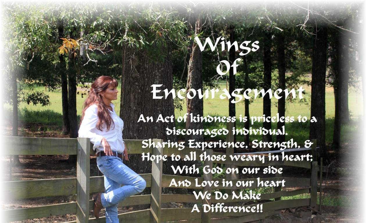 WINGS OF ENCOURAGEMENT,    http://www.wingsofencouragement.net/  & http://ww.wingsofencouragement-wendybox.com